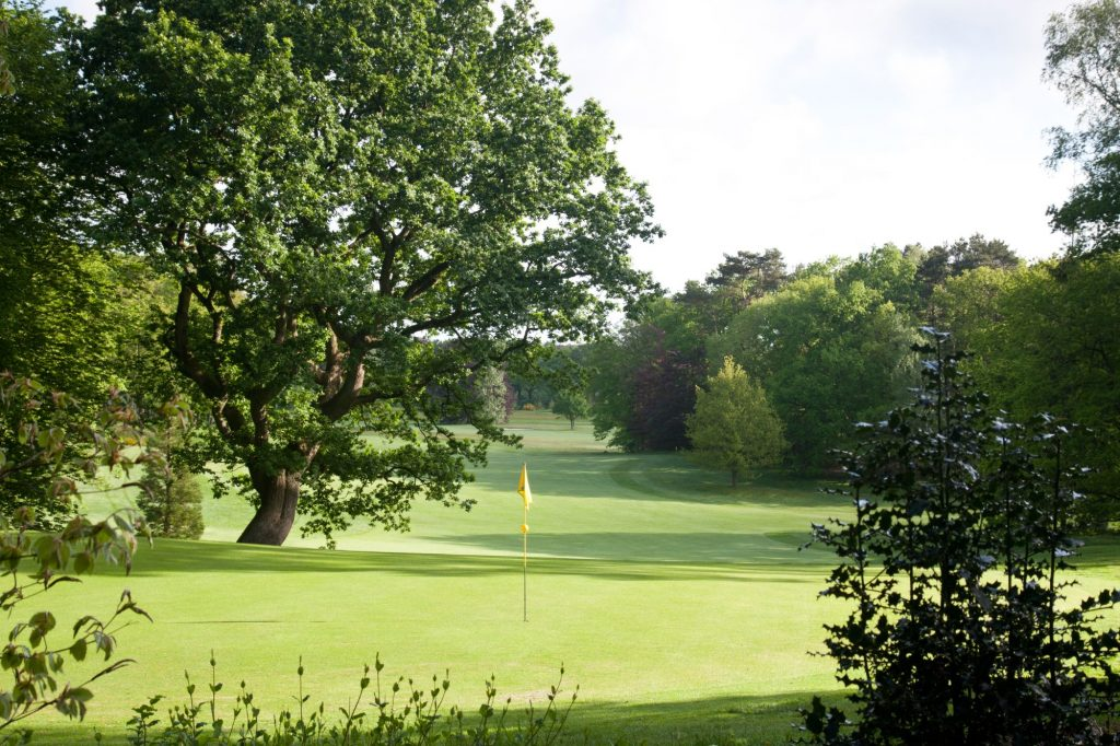 Hole 6 van de Hattemse Golf & Country Club